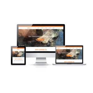 Website Design Brisbane Portfolio ESG Professional Stump Grinding Site