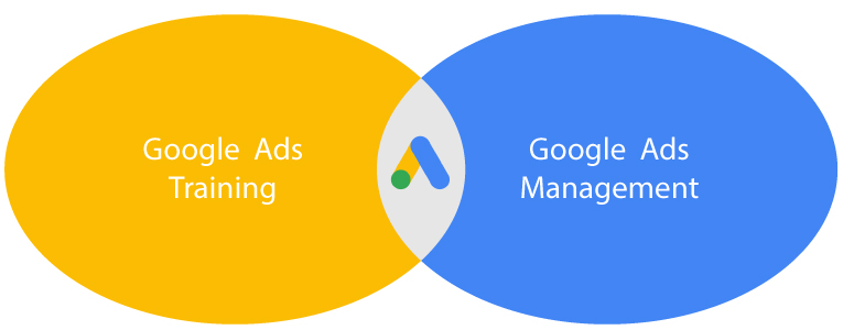 Google Ads Training vs Google Ads Management